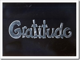 7 juin ~ gratitude_ornament