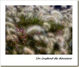 22 sept ~ Douceur
